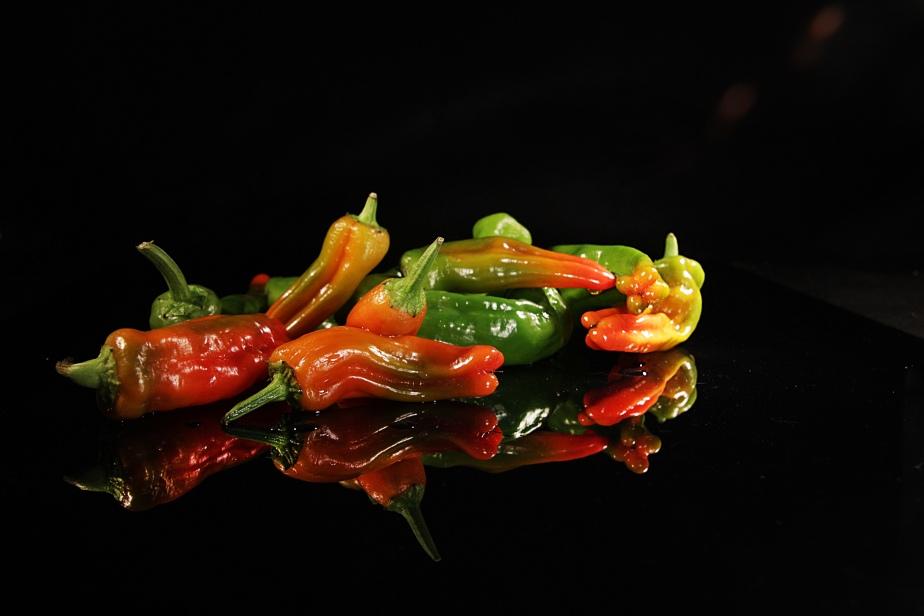 Paprika Frigitello 1